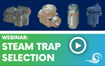 Steam Trap Selection